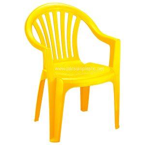 صندلی دسته دار زرد ناصر 870